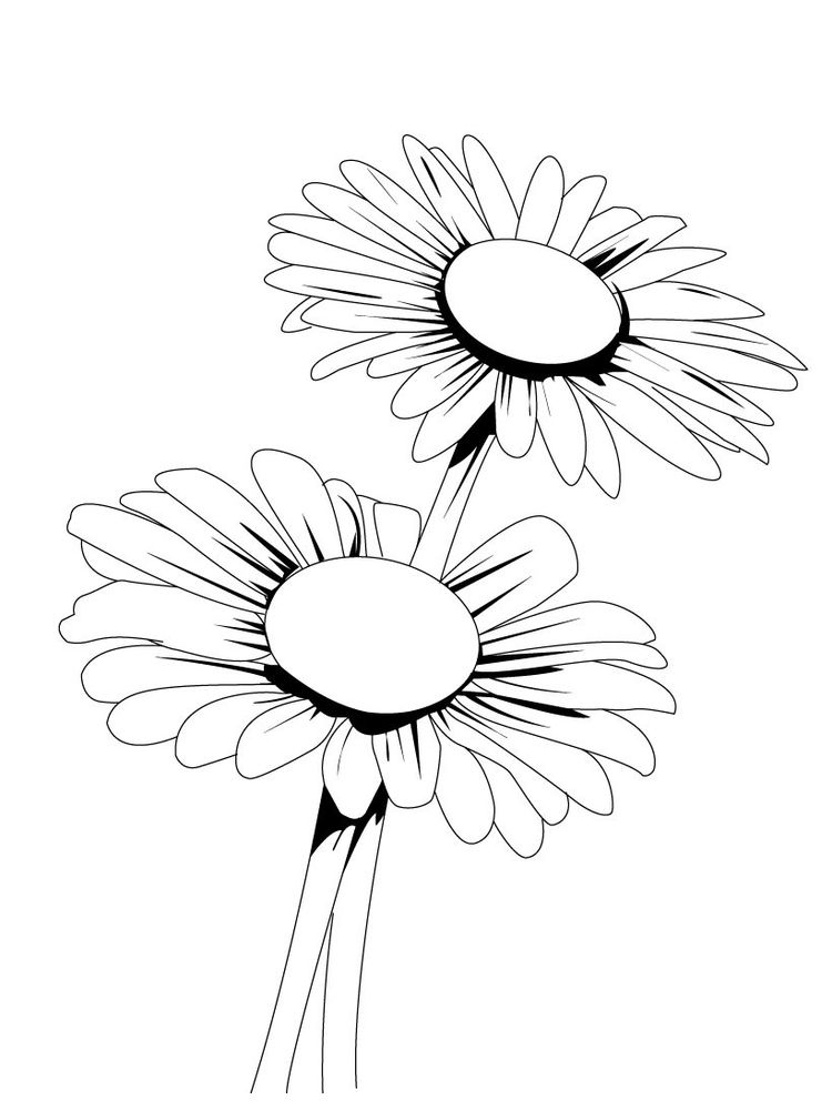 printable daisy coloring pages