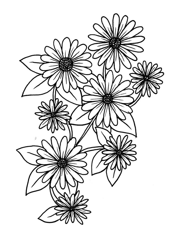 printable daisy flower printable coloring pages