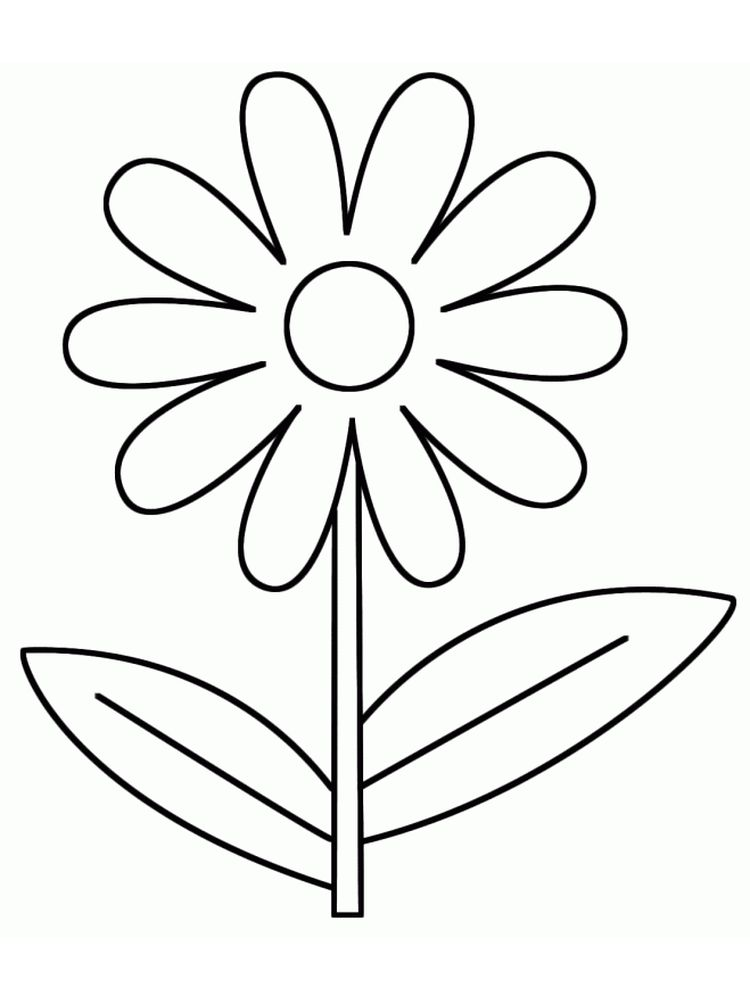 printable girl scout daisy flower garden coloring pages