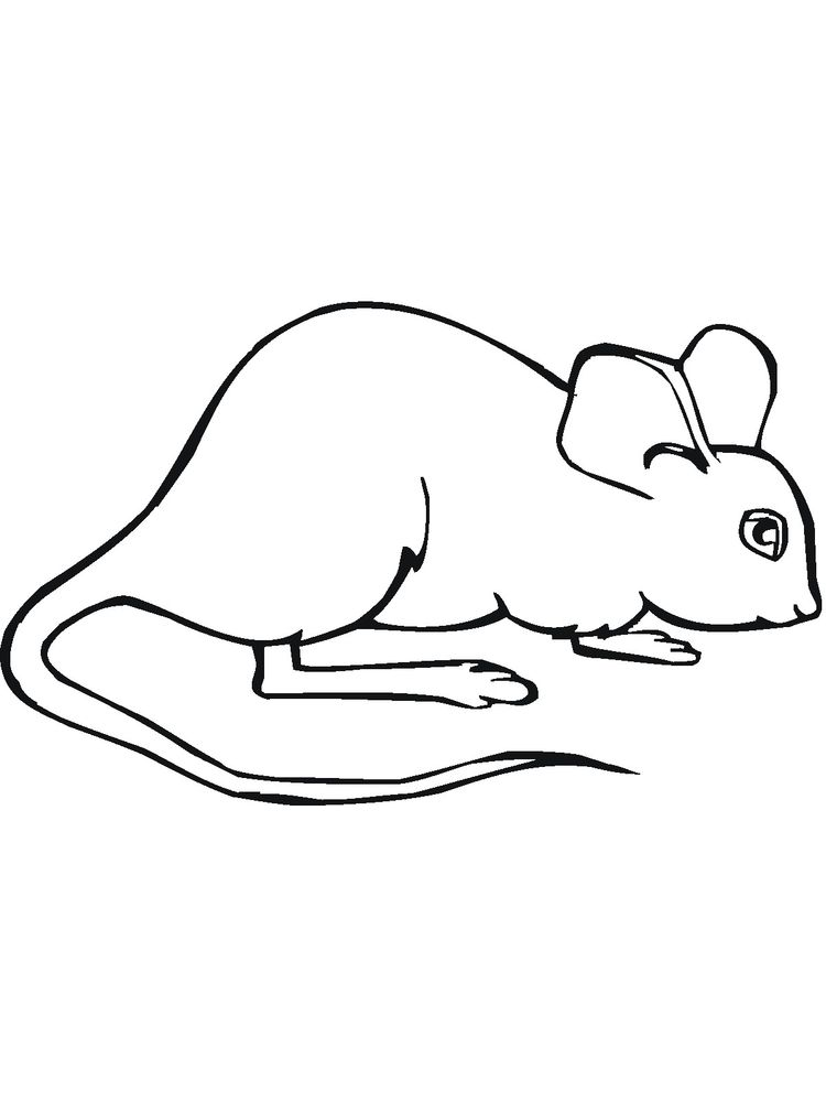 printable mouse coloring pages printable free