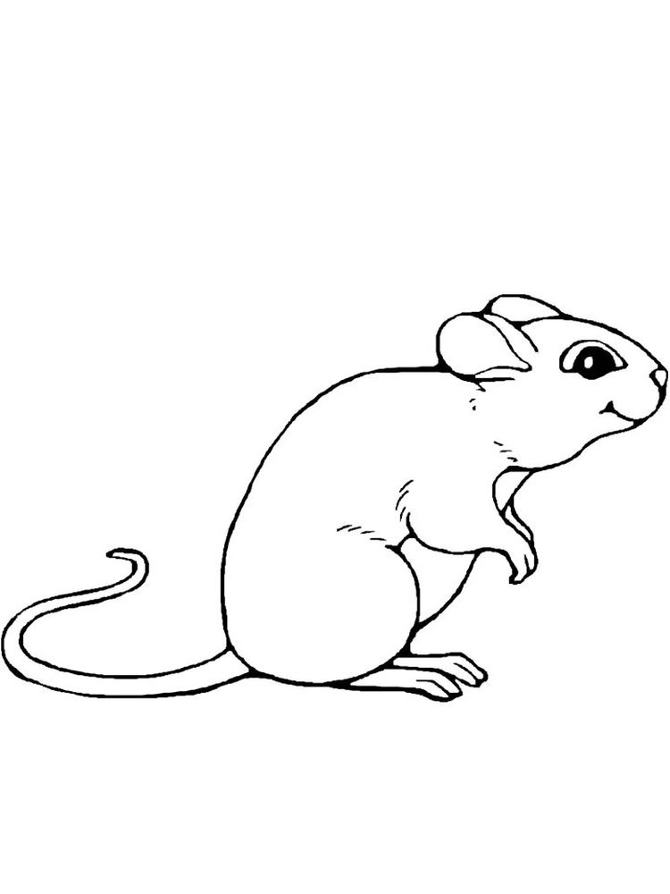 printable mouse coloring pages to print