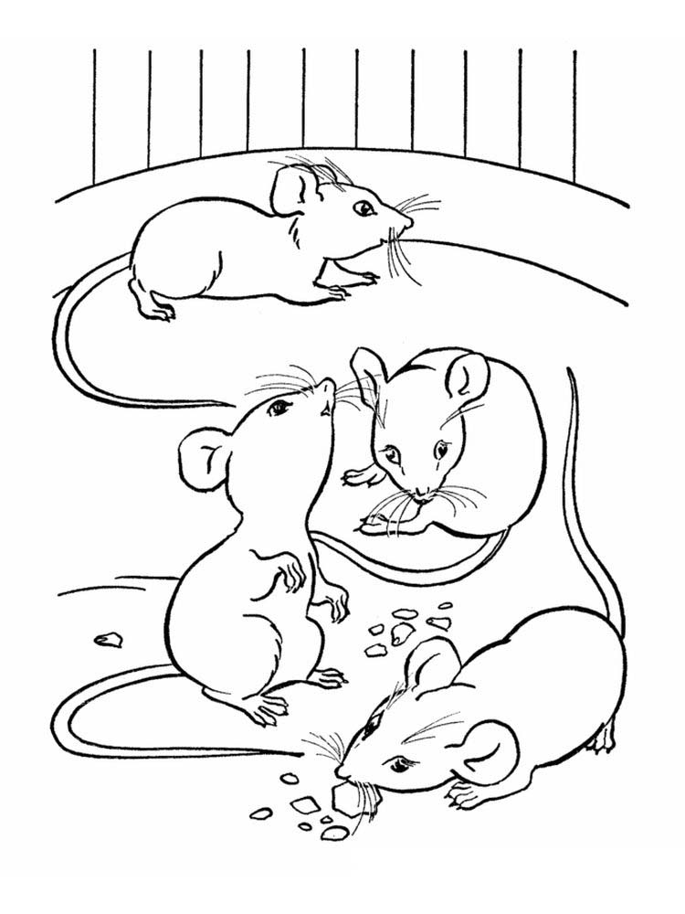 printable mouse coloring printable pages pdf pic