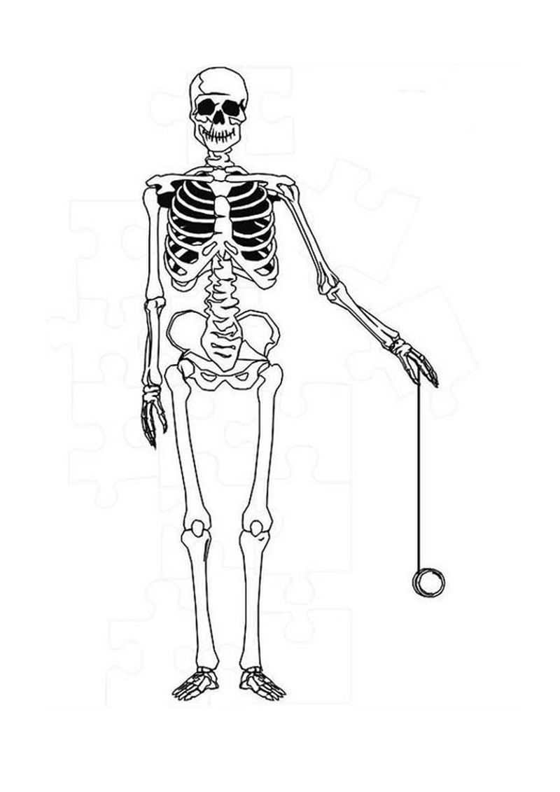 skeleton with body coloring pages for girls