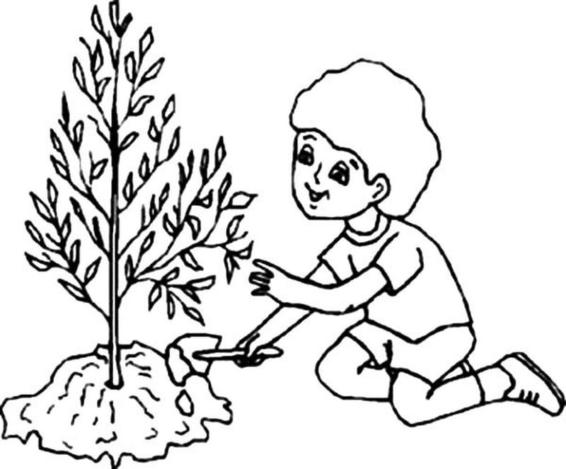 Arbor Day Printable Coloring Pages Free