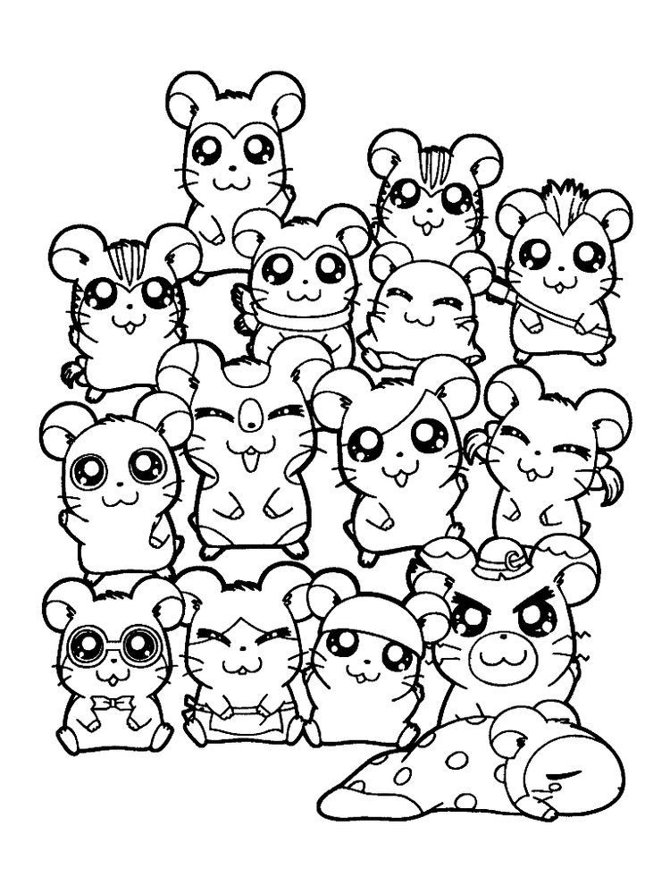 Download Hamster Coloring Pages To Print