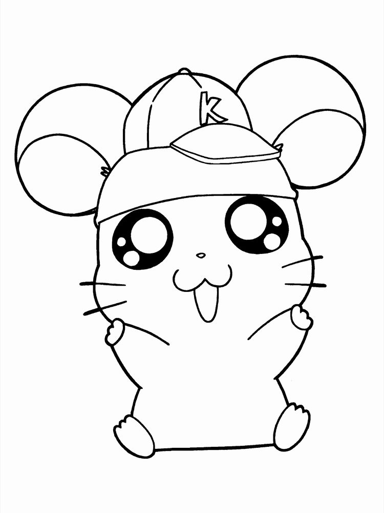 Free Hamster Coloring Pages Printable