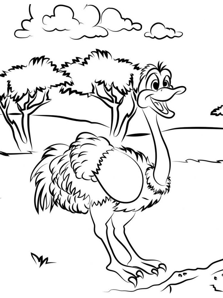 Printable Baby Ostrich Coloring Page