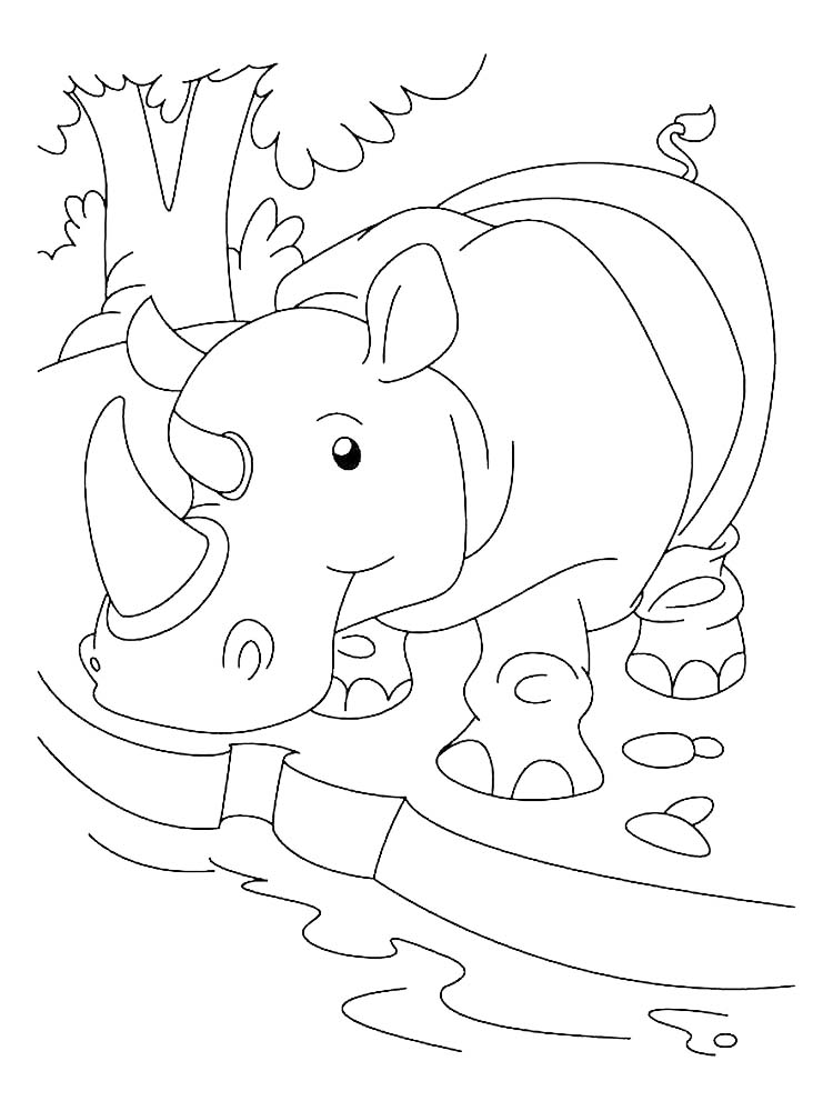 Printable Black Rhino Coloring Pages