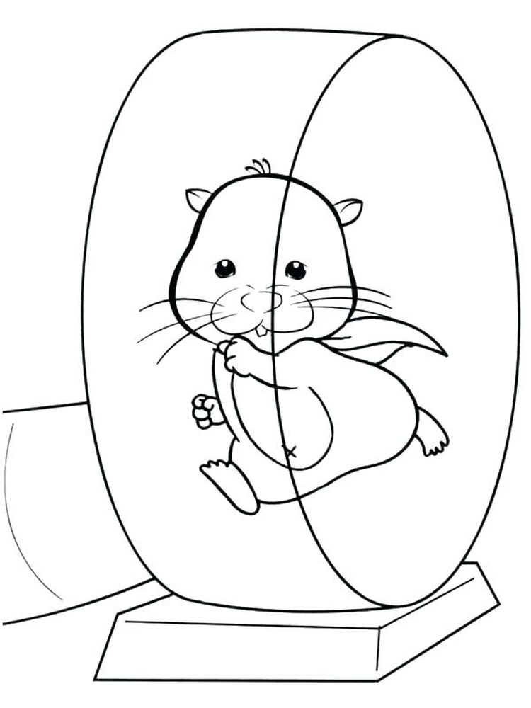 Printable Cartoon Hamster Coloring Pages
