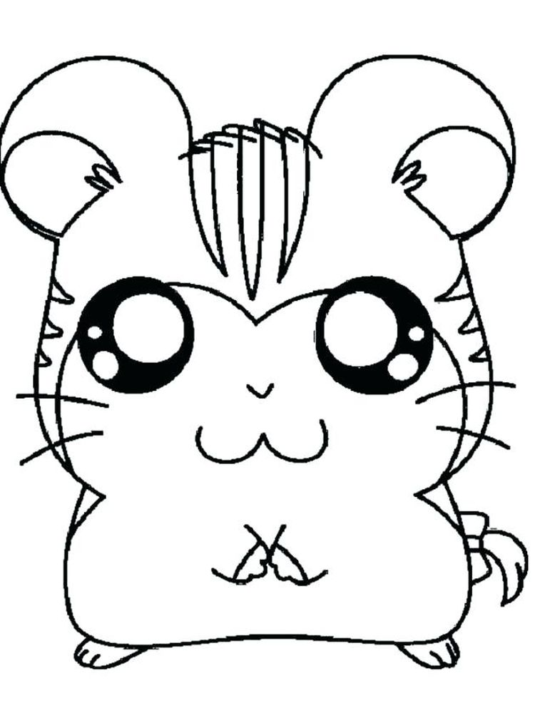 Printable Chubby Hamster Coloring Pages
