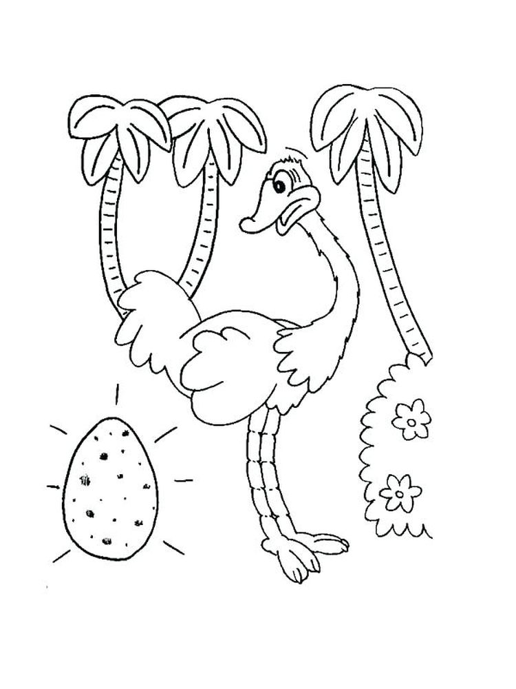 Printable Coloring Page Of A Ostrich