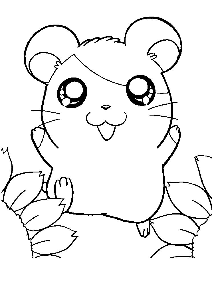 Printable Cute Hamster Coloring Pages