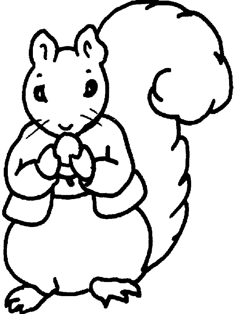 Printable Cute Squirrel Coloring Pages