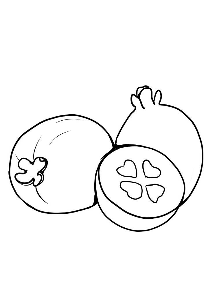 Printable Feijoa for coloring free