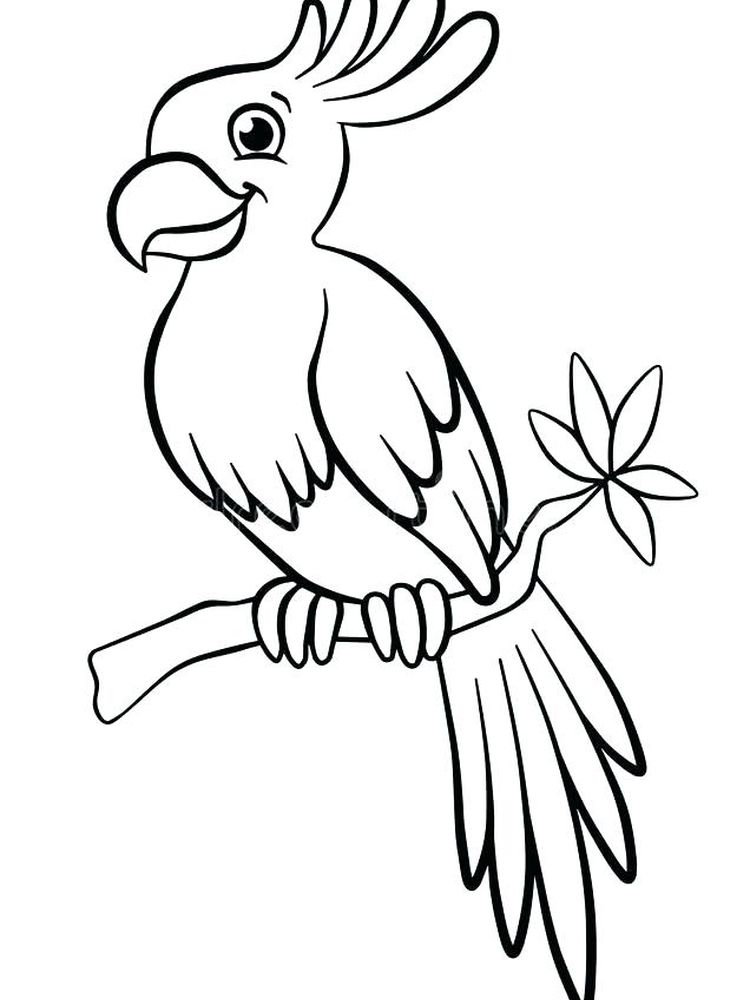 Printable Flying Parrot Coloring Pages
