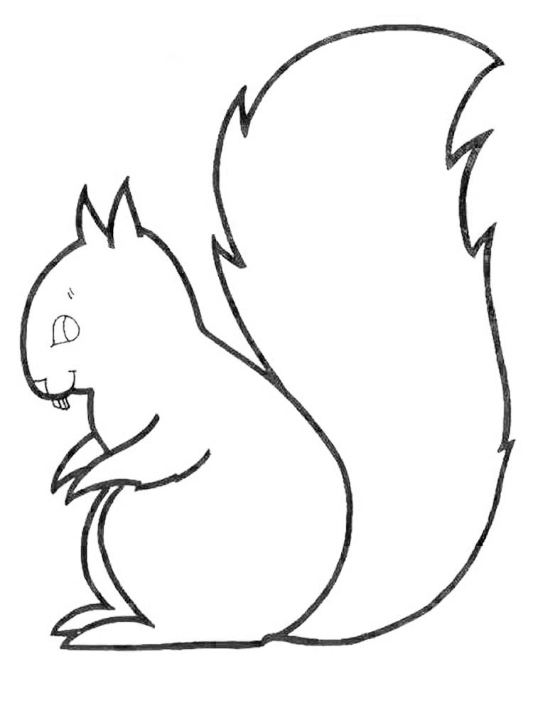 Printable Free Coloring Pages Squirrel