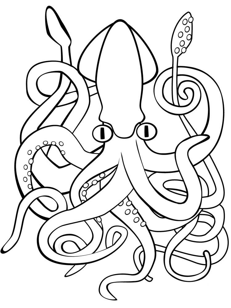 Printable Giant Squid Coloring Page