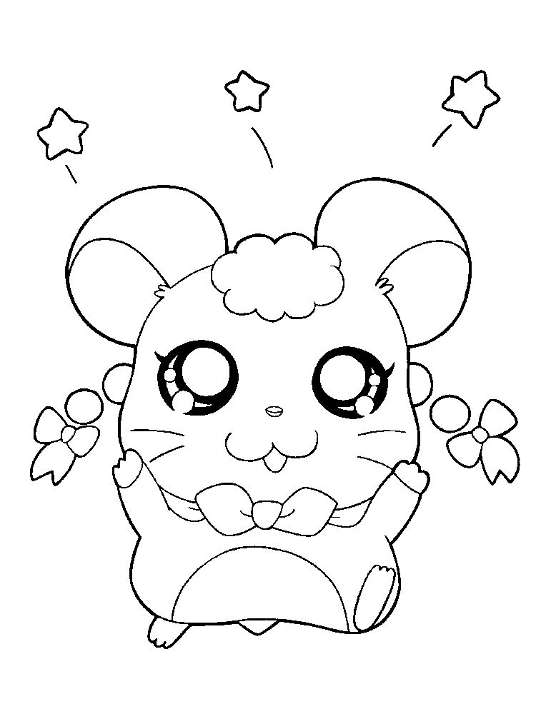 Printable Hamster Coloring Pages Easy