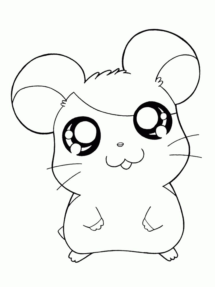Printable Hamster Coloring Pages