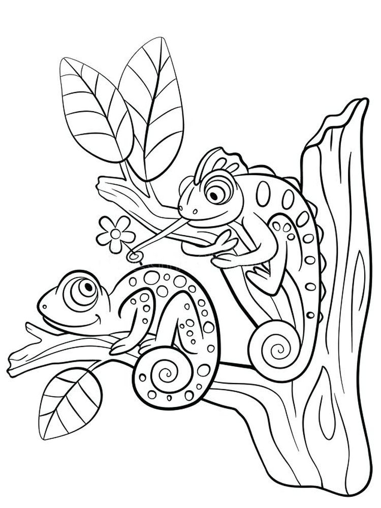 Printable Lizard Coloring Book Pages
