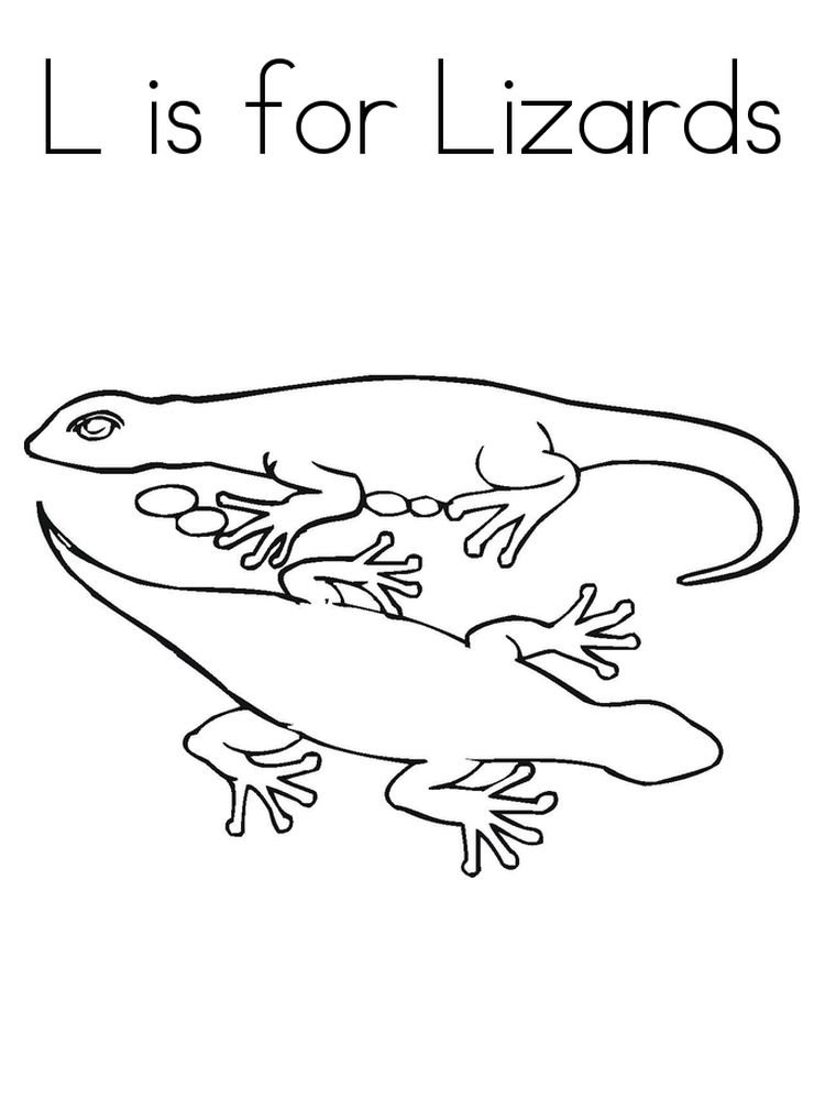 Printable Lizard coloring pages download