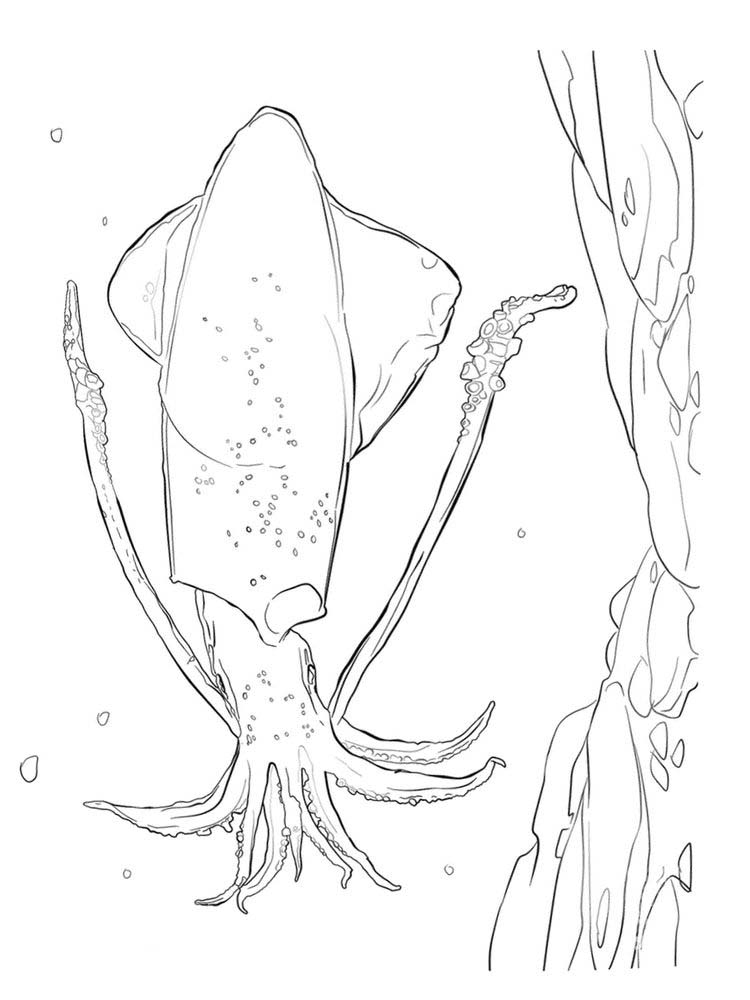 Printable Minecraft Squid Coloring Pages