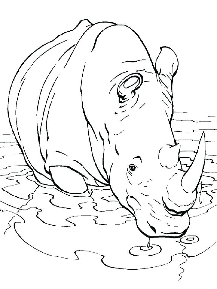 Printable Rhino Coloring Page Images