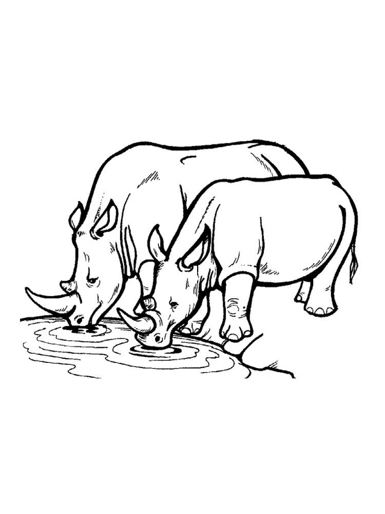 Printable Rhinoceros Coloring Pages Pdf