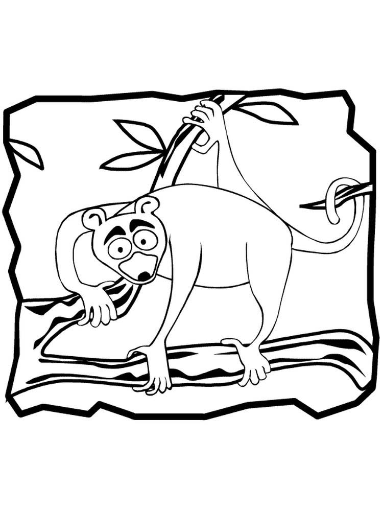 Printable Ring Tailed Lemur Coloring Pages