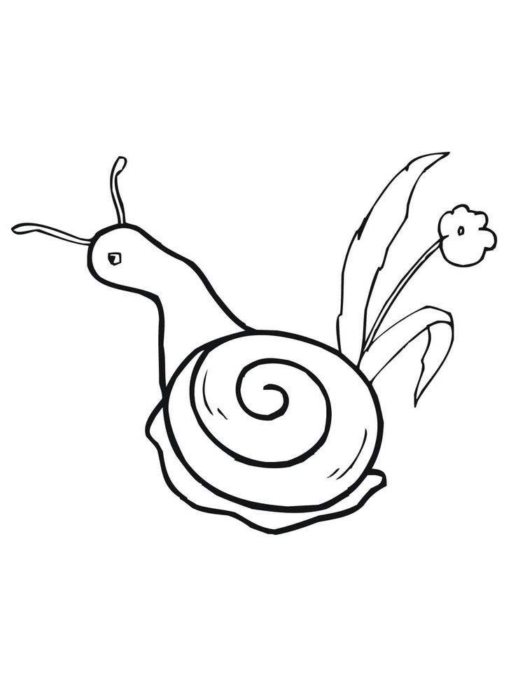 Printable Snail Coloring Pages