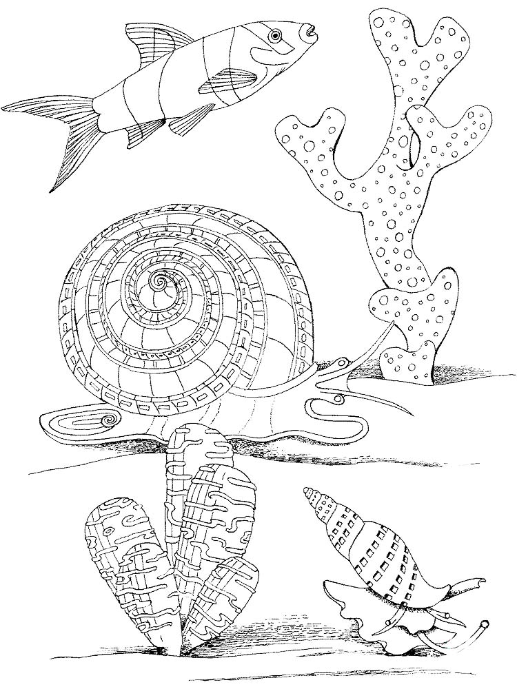 Printable Snails Coloring Pages