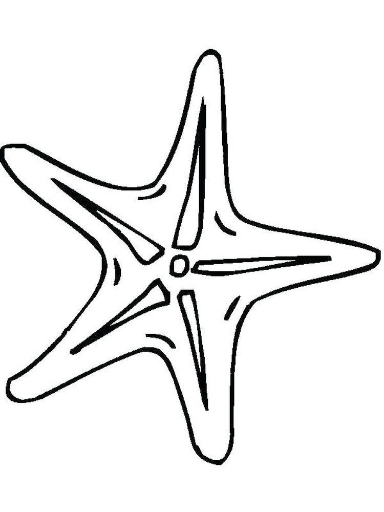 Printable Starfish Coloring Pages For Adults
