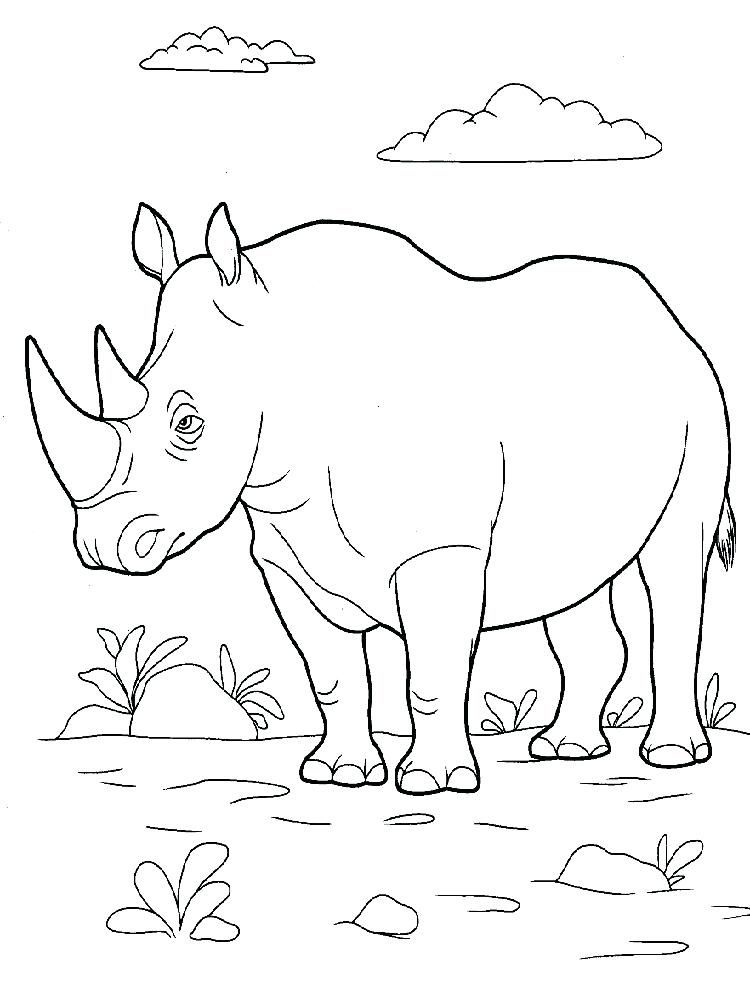 Printable Woolly Rhino Coloring Pages