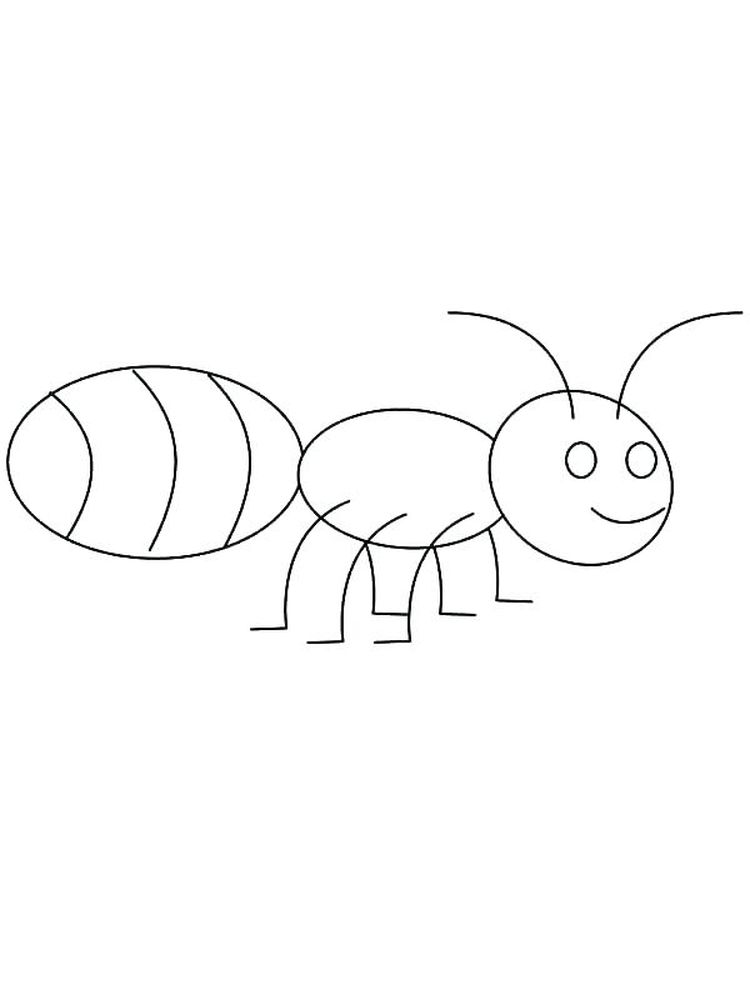 ant coloring pages printable print