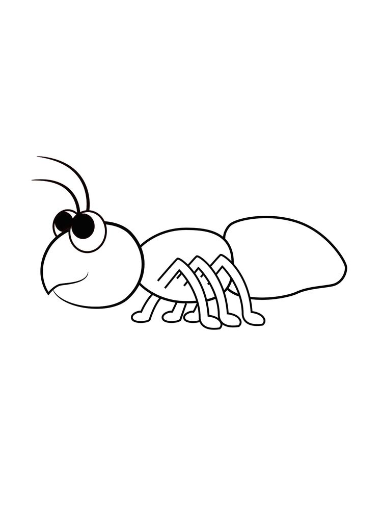 ant image coloring pages