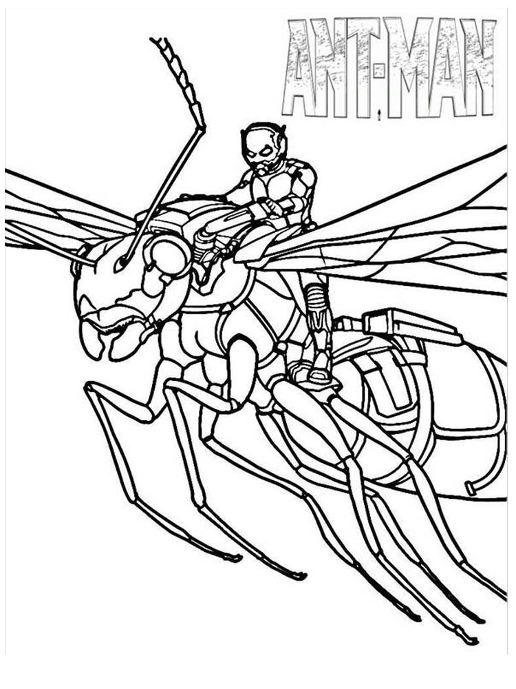 ant man coloring pages to print