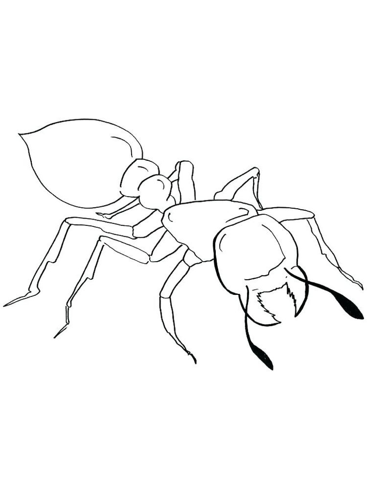 ant man coloring pages