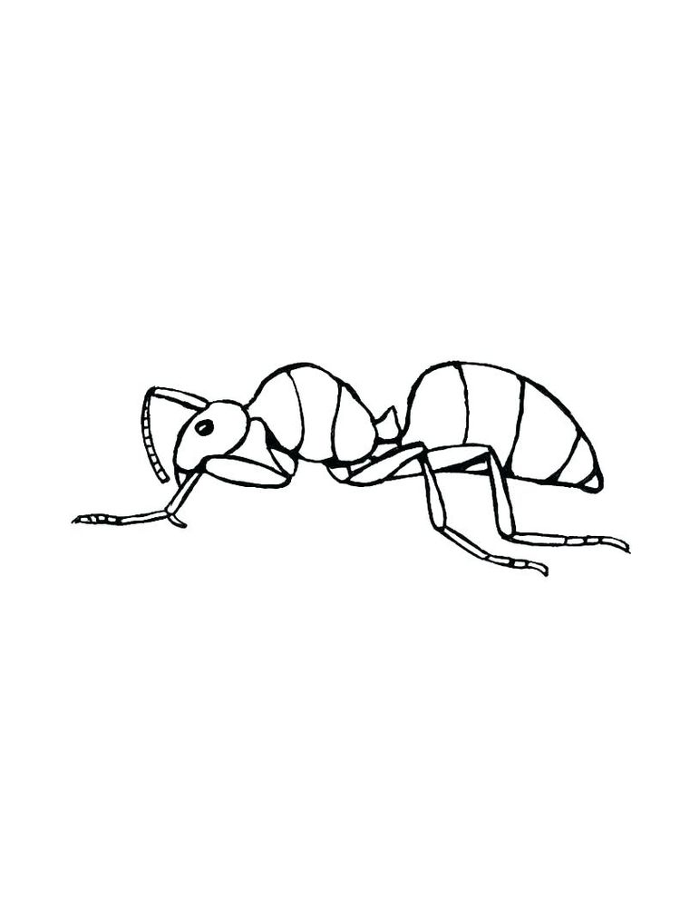ant man image coloring pages