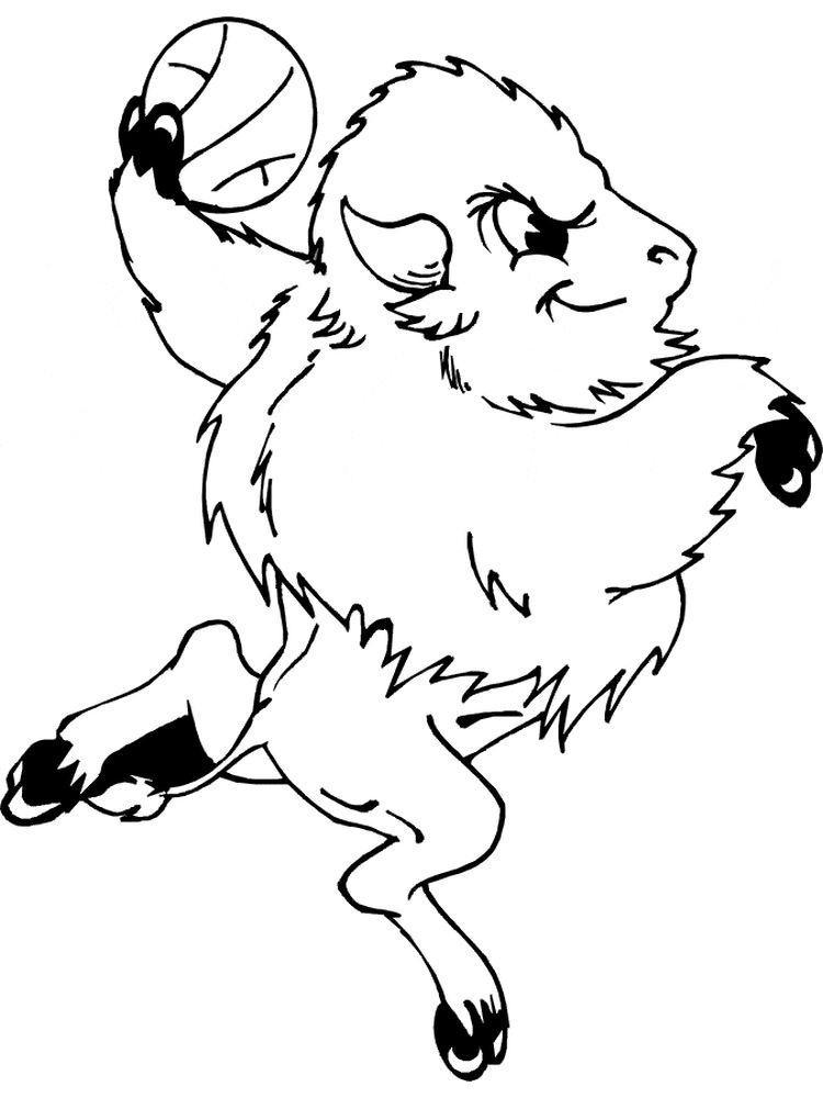buffalo coloring pages for adults print