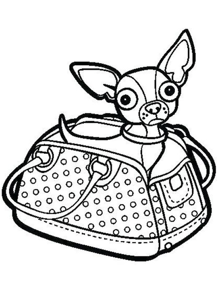 chihuahua coloring pages to print print