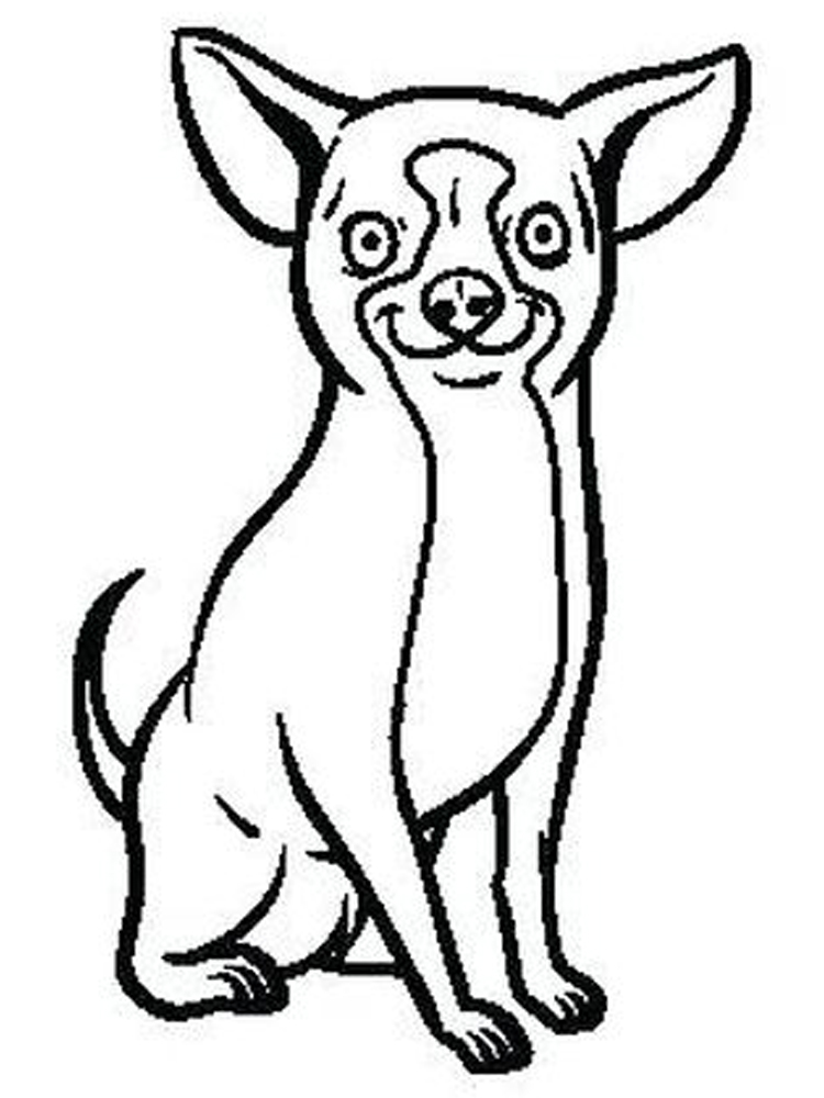 chihuahua puppy coloring pages print