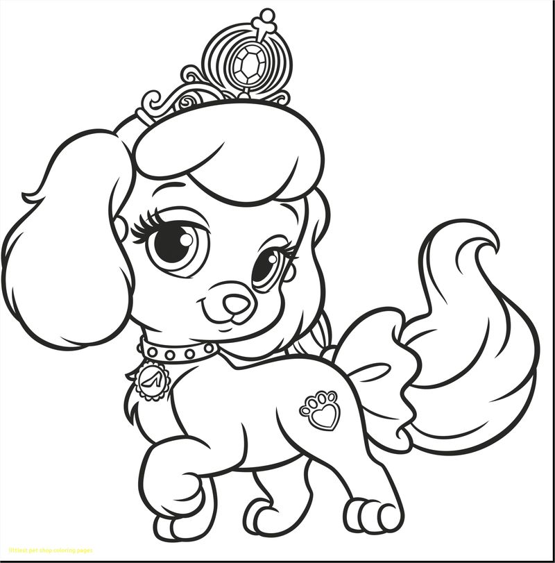 coloring page puppies wonder pets