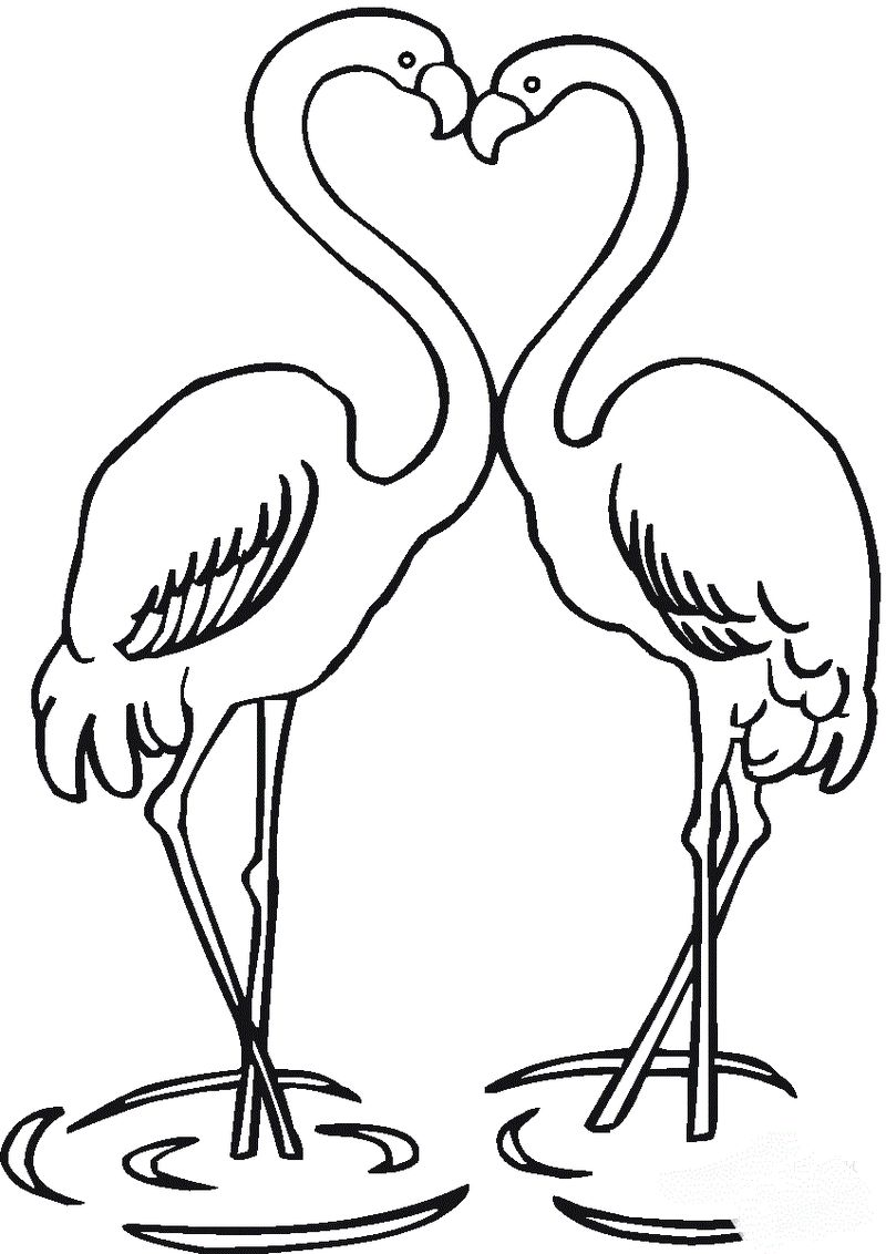 coloring pages of cartoon flamingos