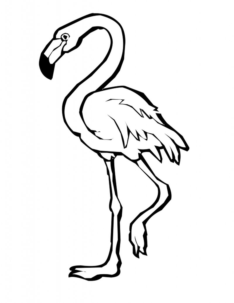 coloring pages of flamingos