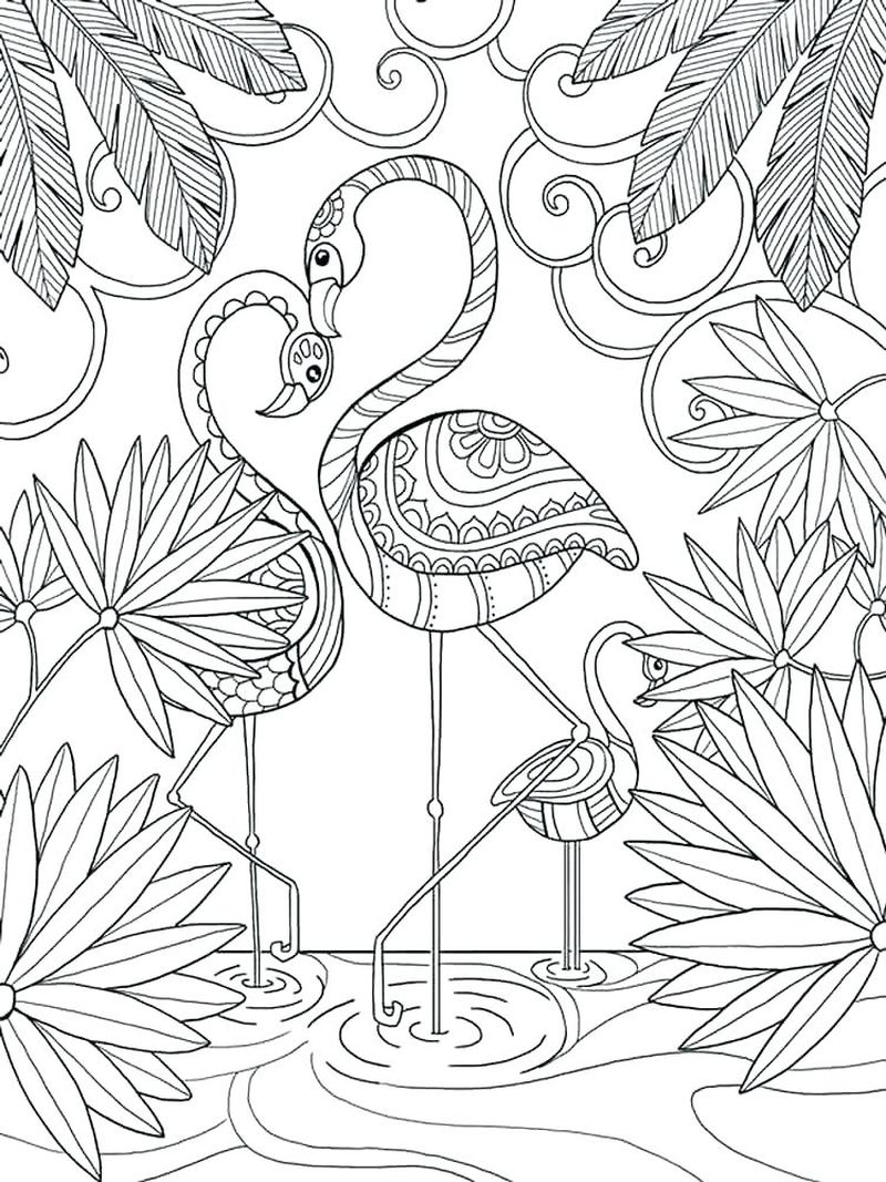 coloring pages of pink flamingos