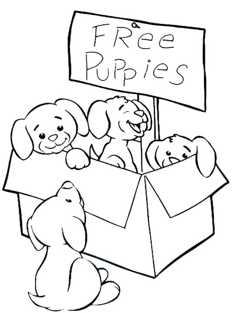coloring picture of puppies