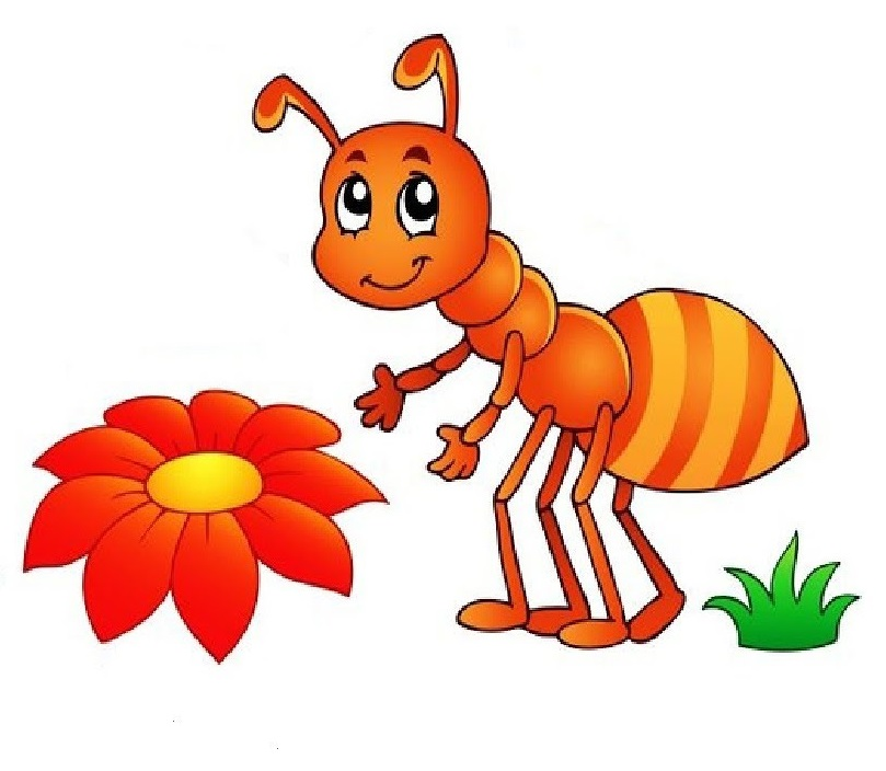 deaw Ant Coloring Page
