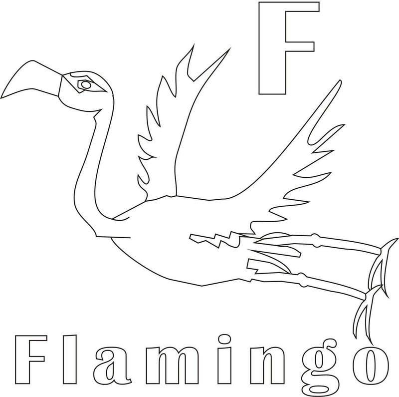 flamingo coloring pages easy