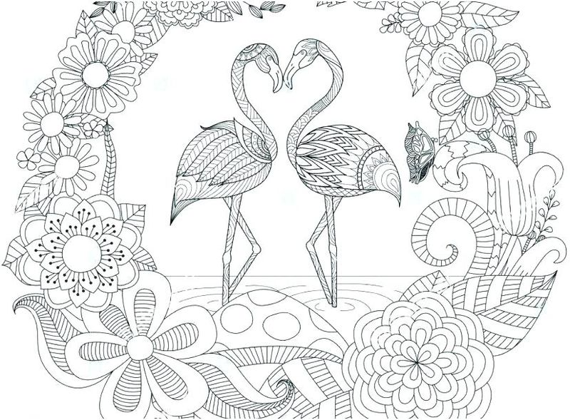 flamingo coloring pages free