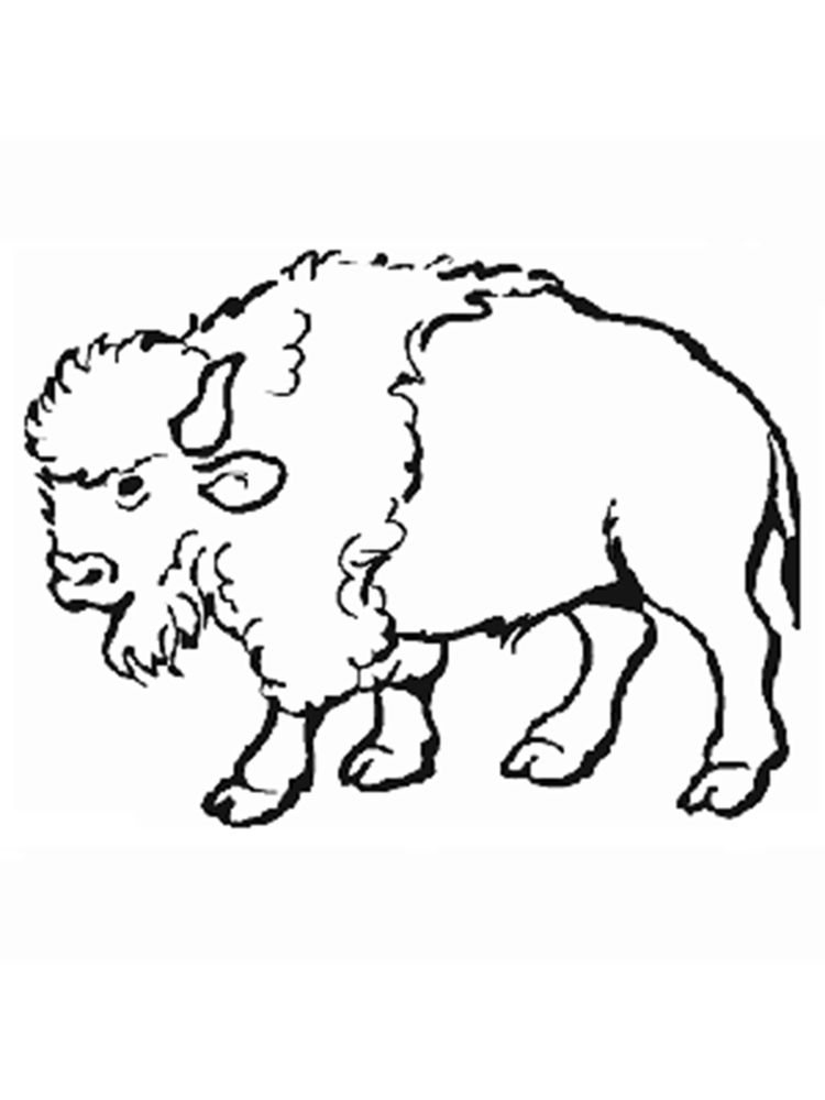 free PRINTABLE buffalo coloring pages